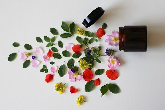 cosmeticos-naturales-con-aloe-vera-cosmetica-natural2