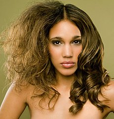 82f1f7cc70a8e20b_a-frizzy-hair-larger1